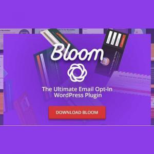 bloom-wordpress-plugin-plugin-dang-ky-nhan-tin