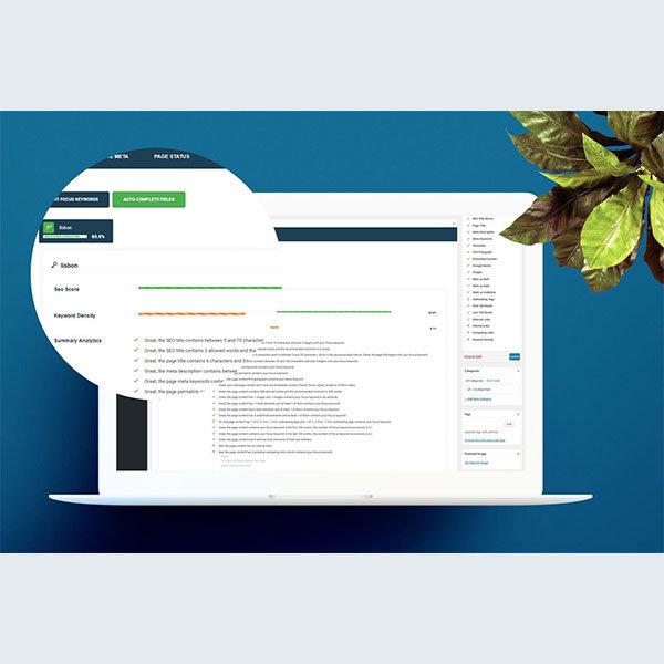 smart-seo-wordpress-plugin